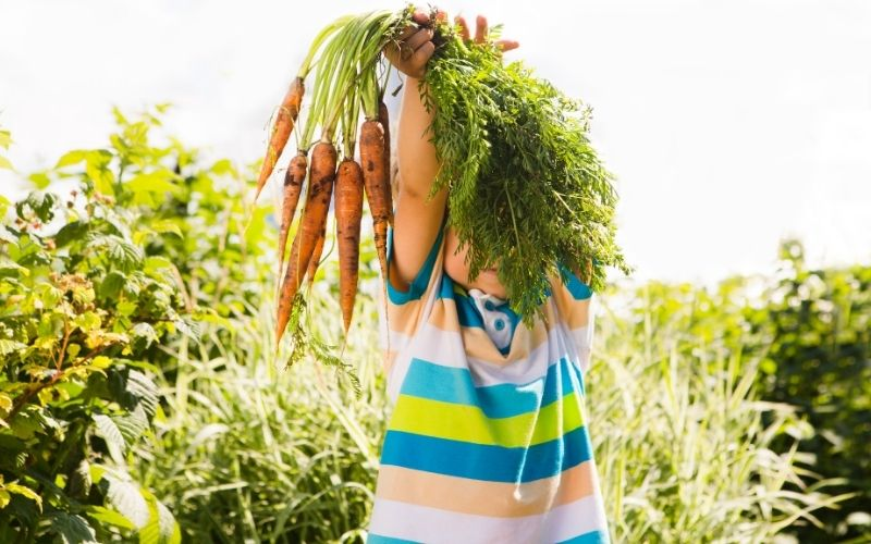 10 Tips on How to Keep Kids Interested in Urban Gardening