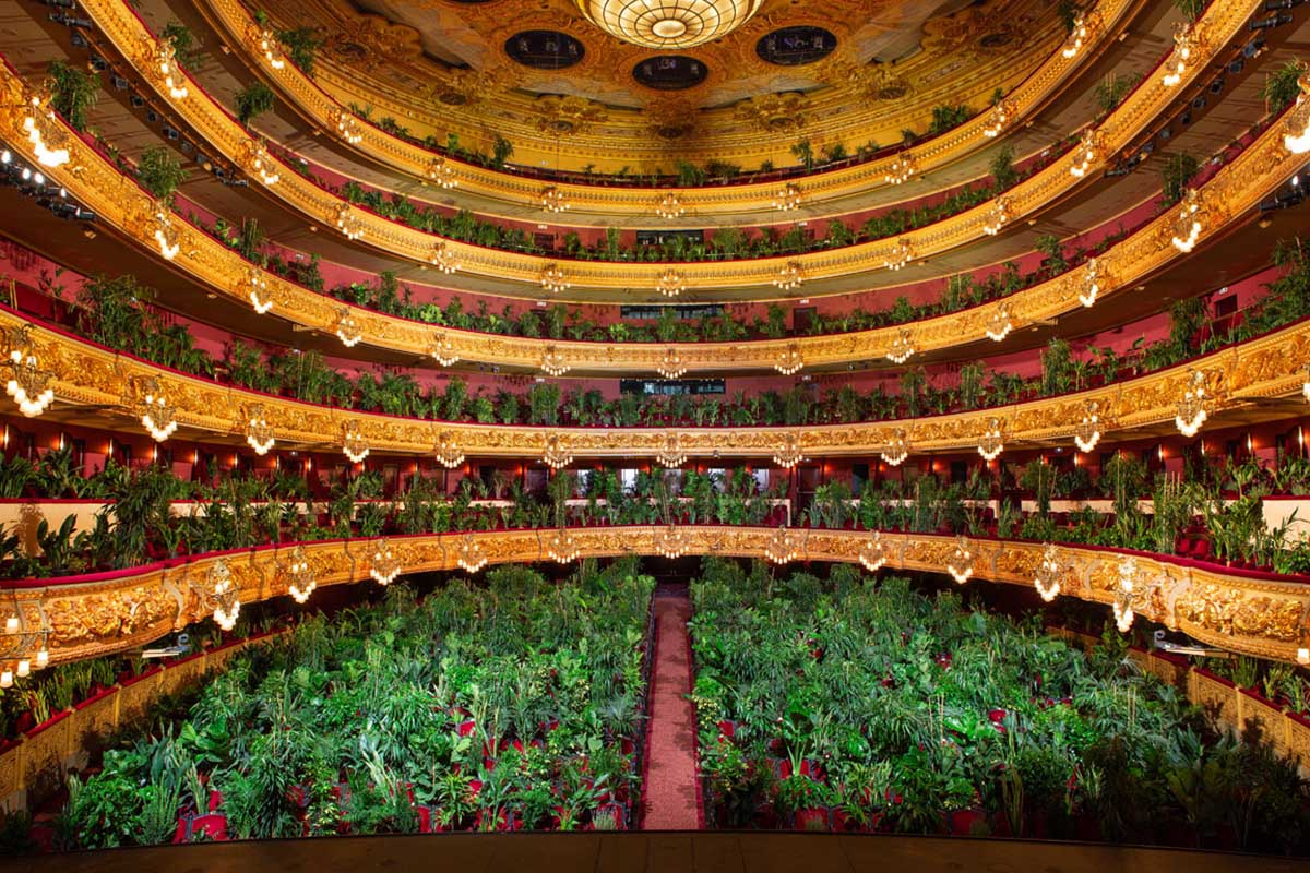 Theater Converted Into An Art Installation Of Indoor Farming